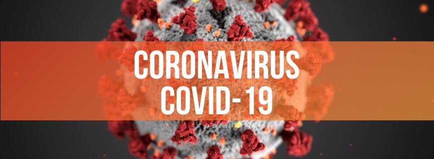 Intelligenza Artificiale, Robotica e Big Data per la futura medicina nelle pandemie tipo Coronavirus